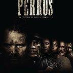 فیلم سینمایی Perros به کارگردانی Harold Trompetero