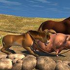 فیلم سینمایی The Lion of Judah به کارگردانی Deryck Broom و Roger Hawkins