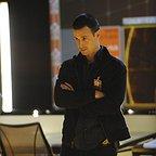 سریال تلویزیونی 24 با حضور Freddie Prinze Jr.