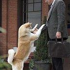 فیلم سینمایی هاچی: داستان یک سگ با حضور ریچارد گی یر
