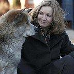 فیلم سینمایی هاچی: داستان یک سگ با حضور جوان الن