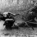 فیلم سینمایی هفت سامورایی به کارگردانی آکیرا کوروساوا