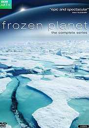 سرزمین یخی