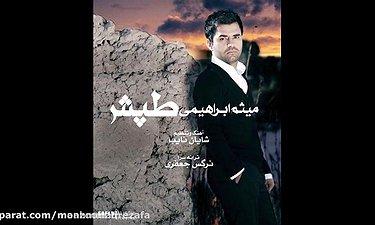 میثم ابراهیمی - طپش